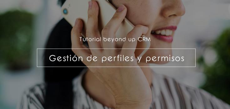Gestión de perfiles y permisos de usuarios CRM paso a paso